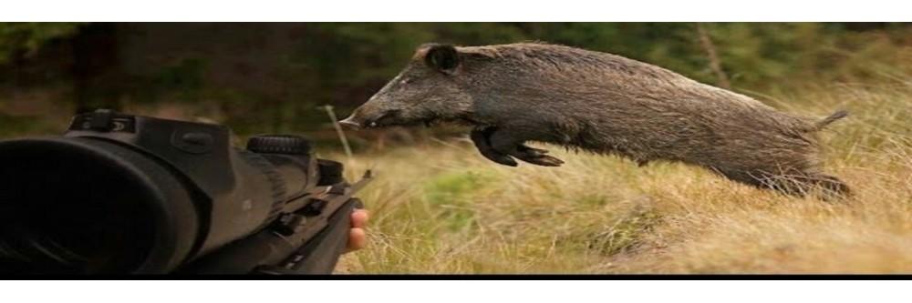 Jagdbereich